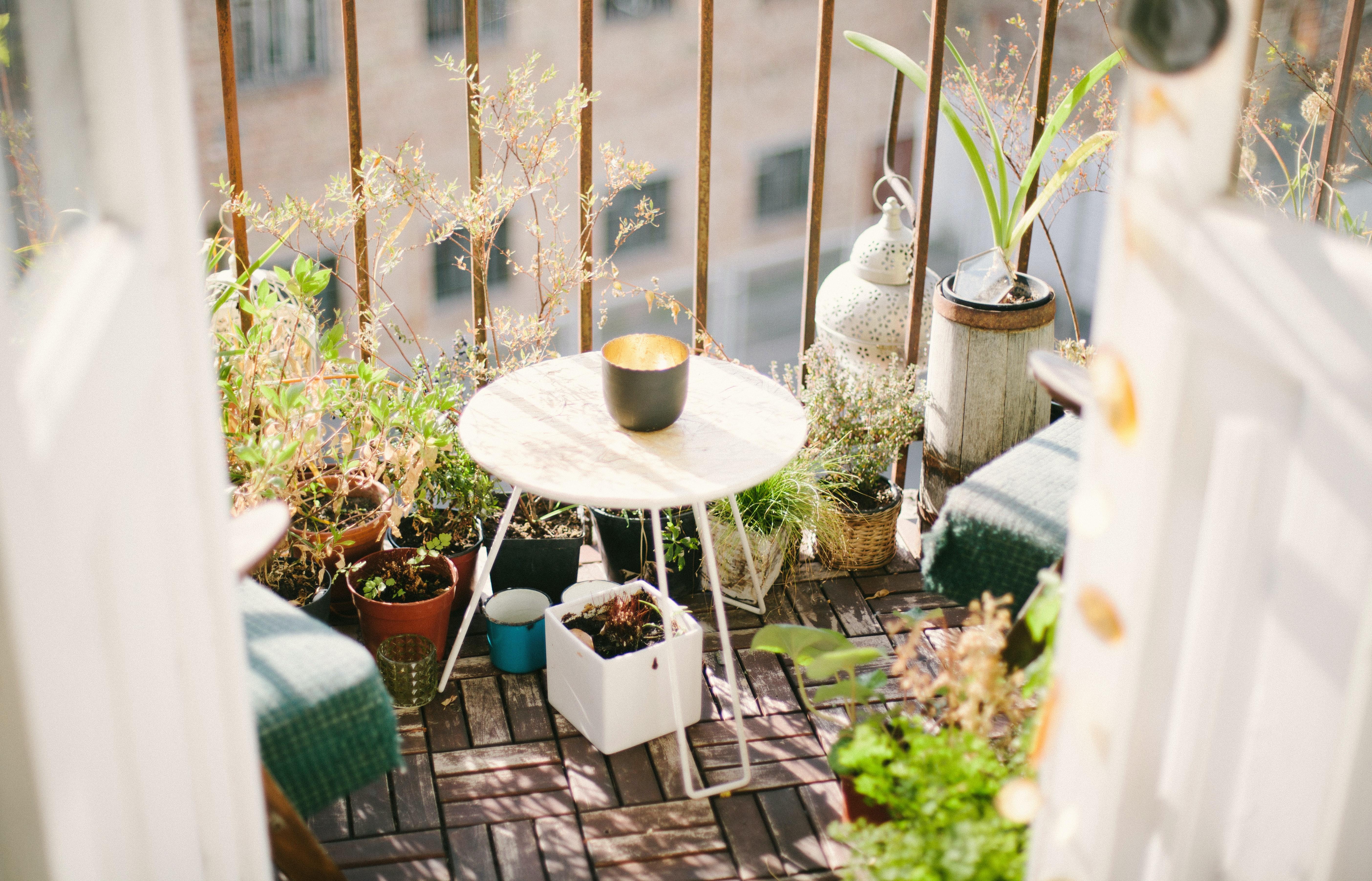 Bild på blommor och inredning på en balkong. Solen lyser.